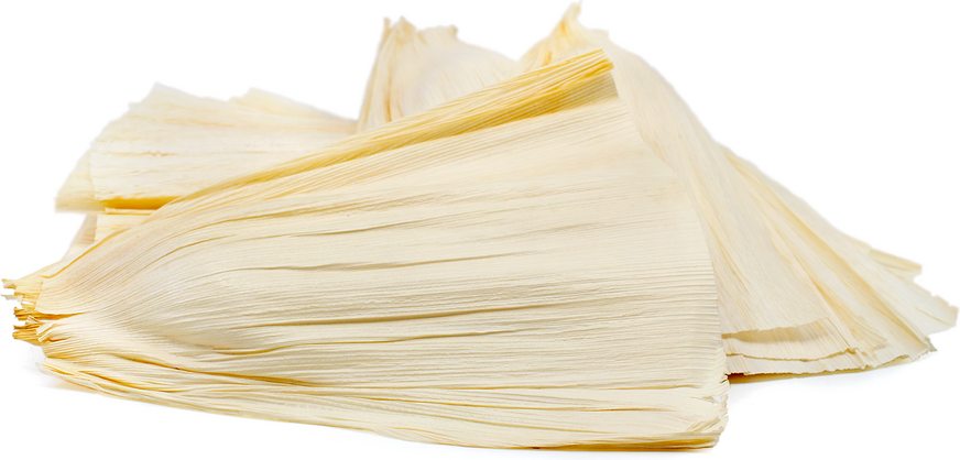 corn husk information recipes and facts