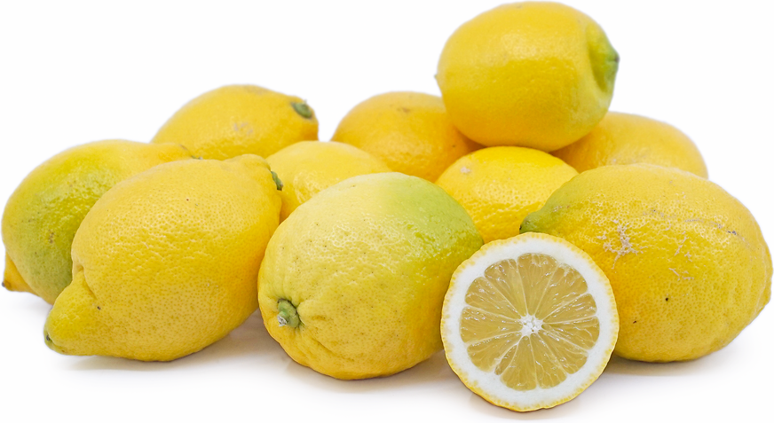 Italian Sorrento Lemons picture