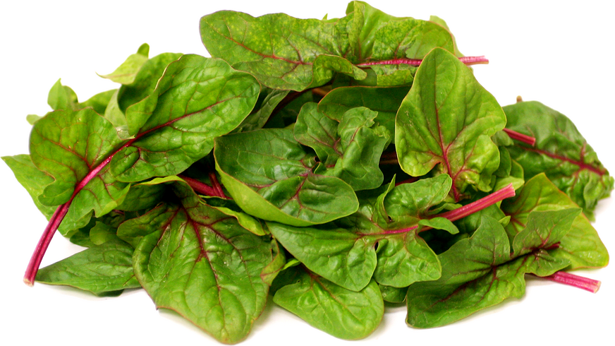Baby Red Okame Spinach picture