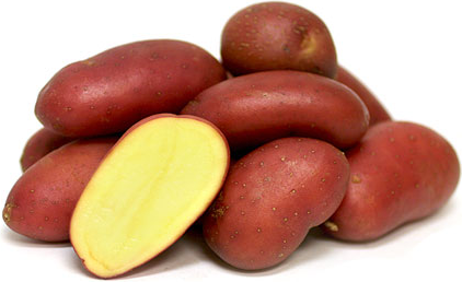 French Heirloom Potatoes picture