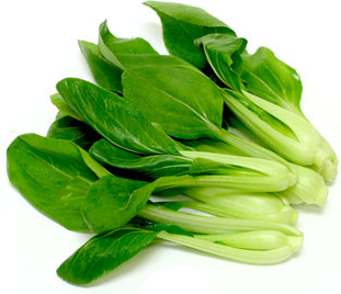 Baby Bok Choy picture