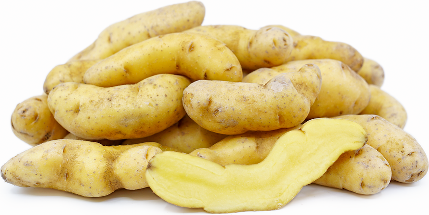 Russian Banana Fingerling Potatoes picture