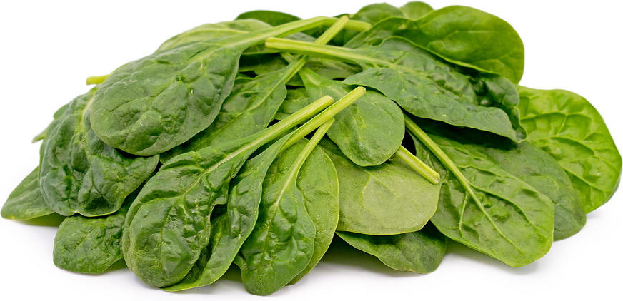 Baby Spoon Spinach picture