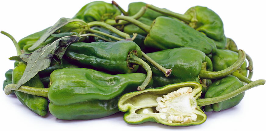 Padron Chile Peppers