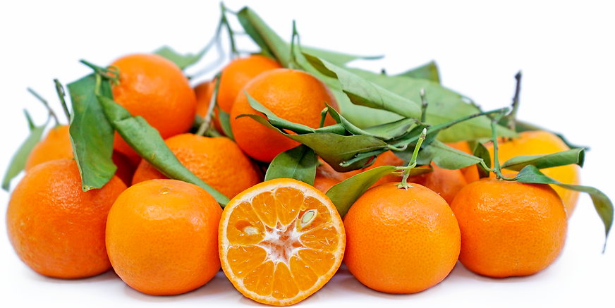 Clementines Tangerines picture