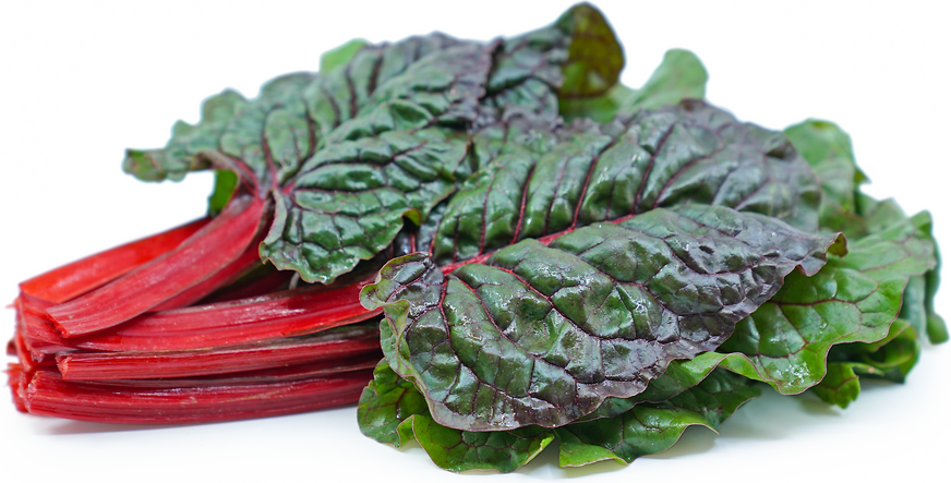 Red Swiss Chard picture