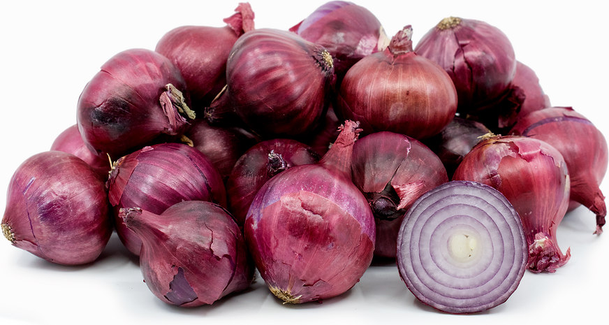 Red Boiling Onions picture