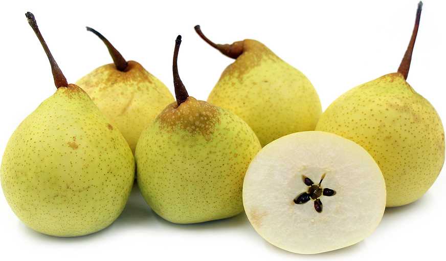 Yali Pears picture