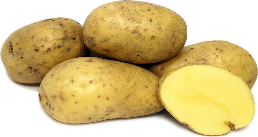 Carola Potatoes