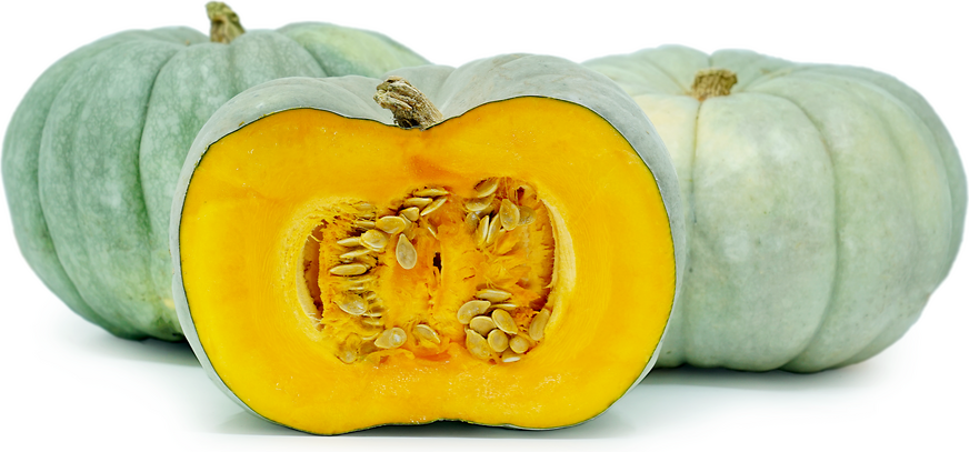 Blue Pumpkins Information Recipes And Facts