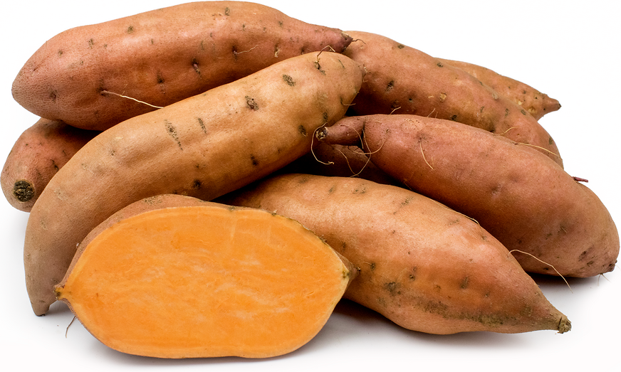 Are yams and sweet potatoes the same thing yahoo dating 10