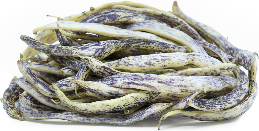 Dragon Tongue Beans picture