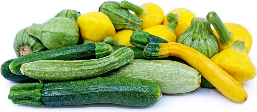 Baby Summer Squash Mix Information Recipes And Facts