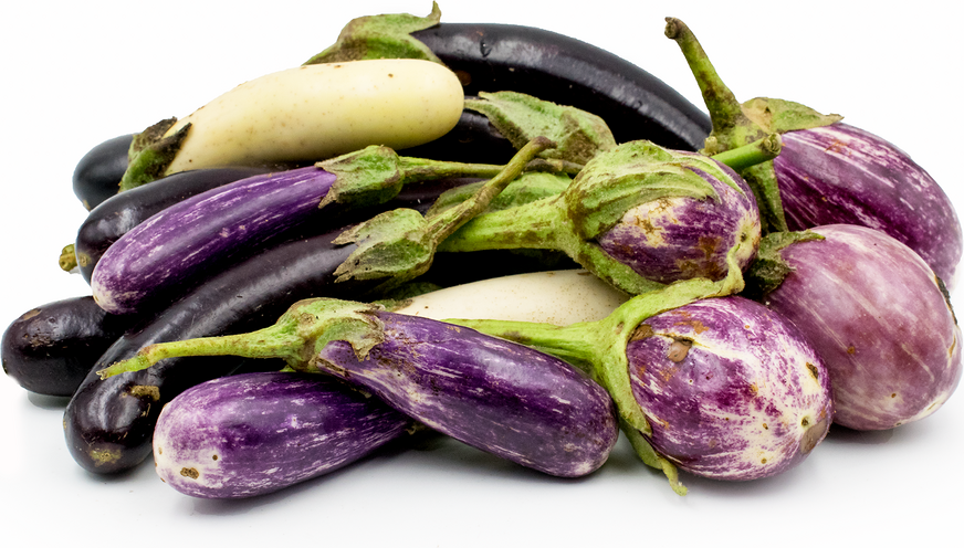 Heirloom Eggplant Mix