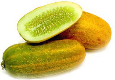 Chinese Yellow Cucumber