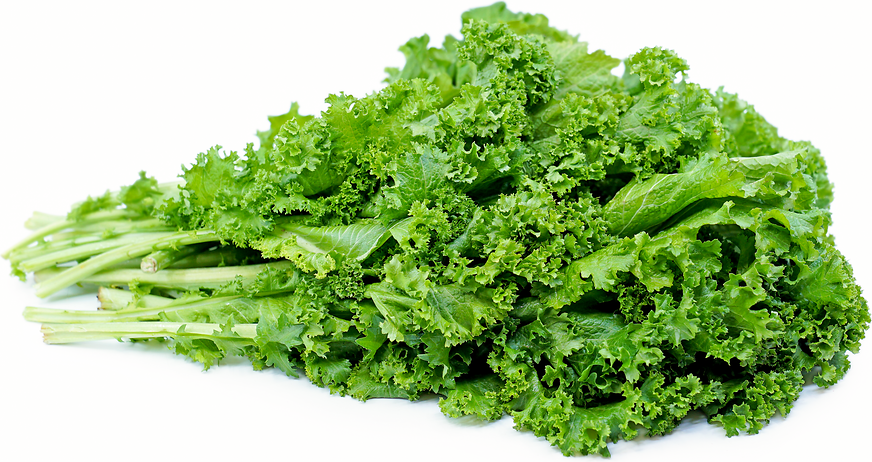 Mustard Greens picture
