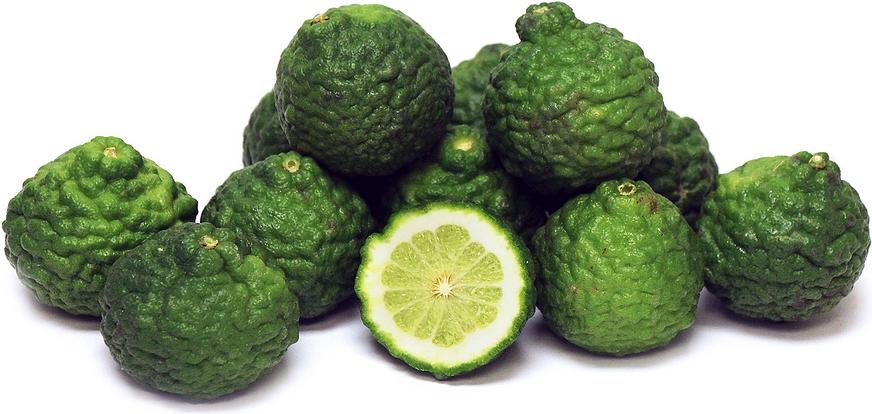 kaffir limes - Kaffir Lime Tree