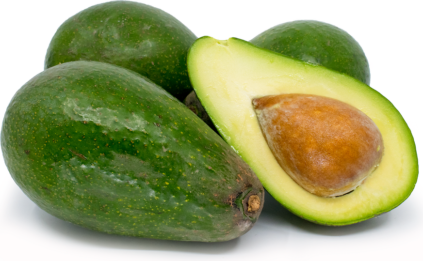 Zutano Avocados Information Recipes And Facts