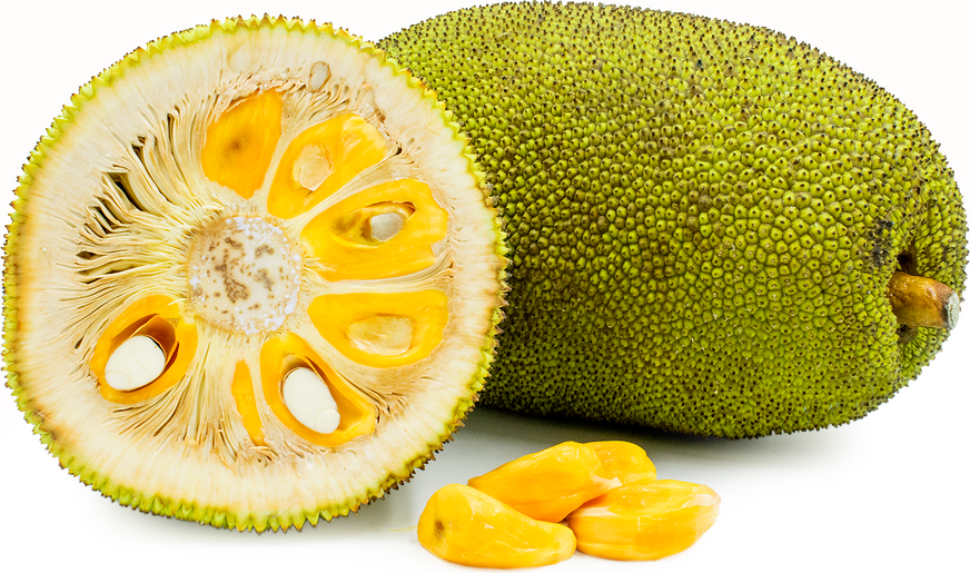 Jack Fruit picture