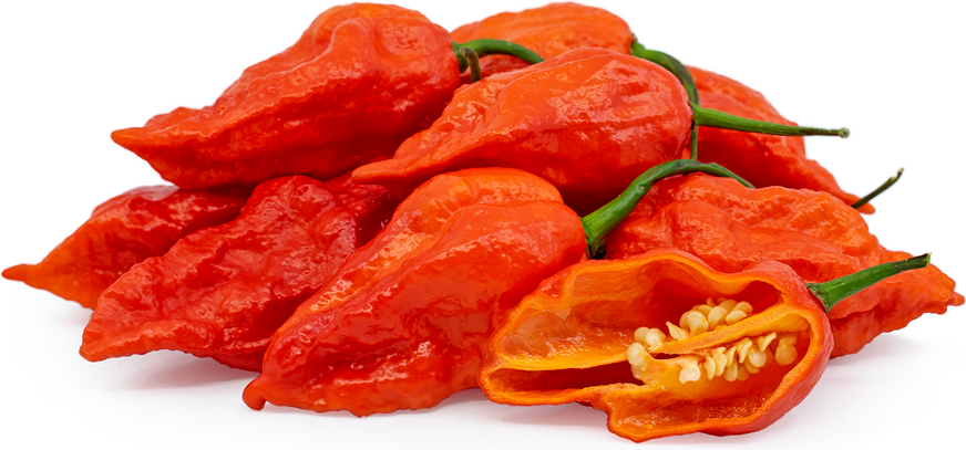 Red Ghost Chile Peppers