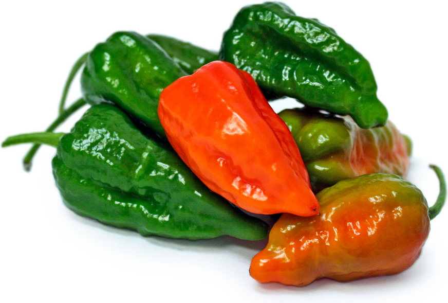 Green Ghost Chile Peppers picture