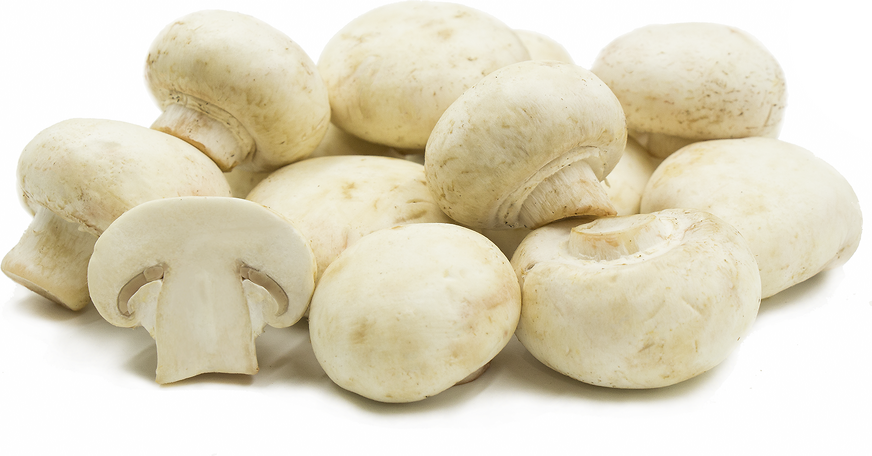 White Medium Mushrooms