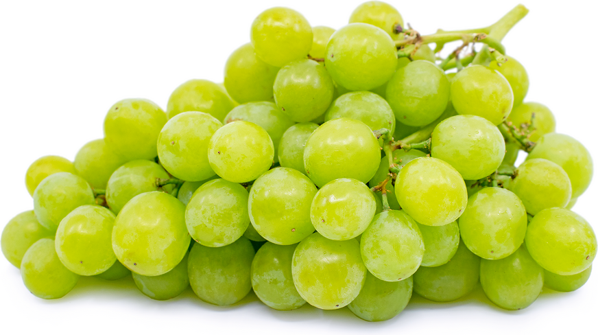 Green Muscat Grapes picture