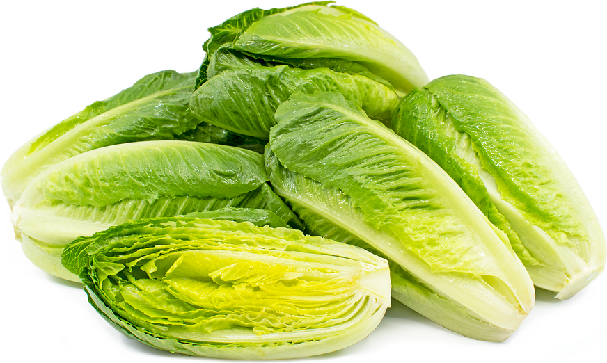 how to prepare romaine hearts
