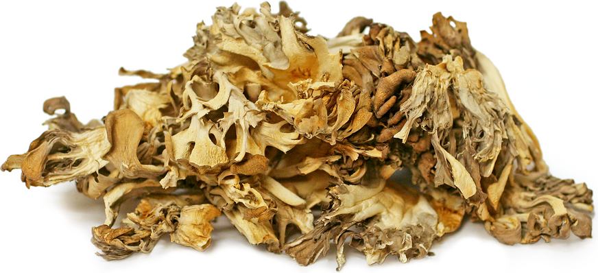 Dried Maitake Mushrooms picture
