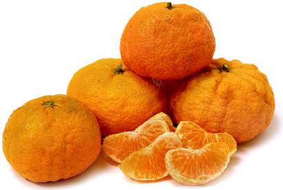 Gold Nugget Tangerine