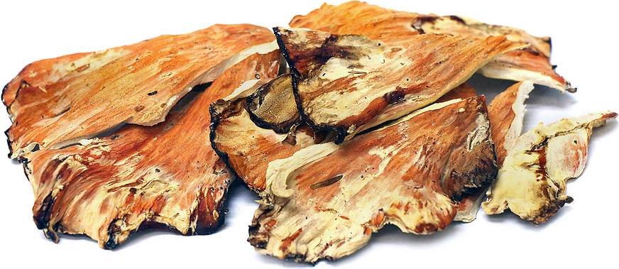 Dried Chicken of the Woods picture