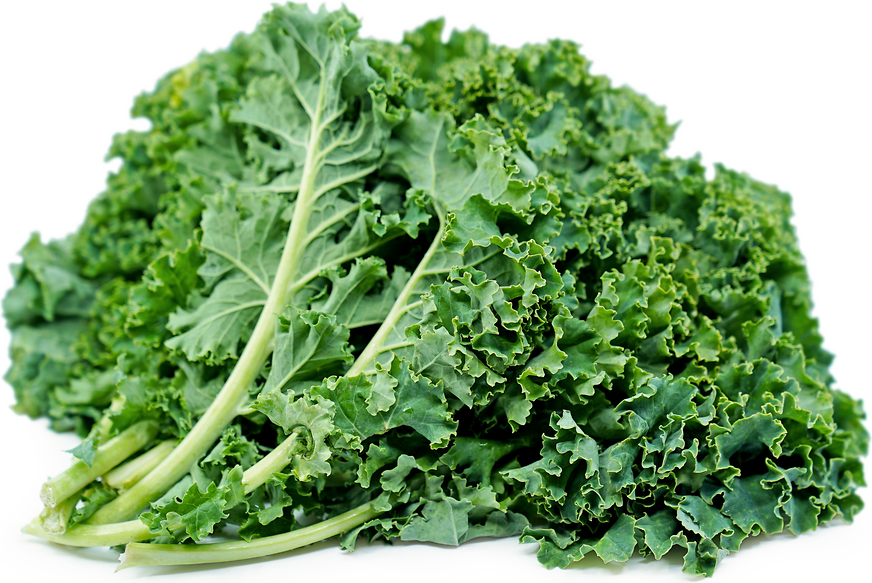 Green Kale picture
