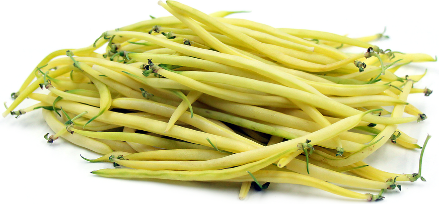 Yellow Baby French Beans