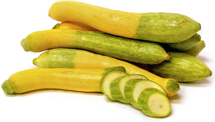 zephyr squash information and facts
