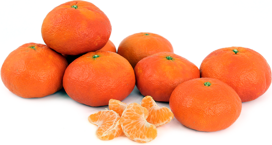 Yosemite Gold Tangerines picture