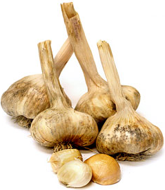 Rancho Grande Garlic