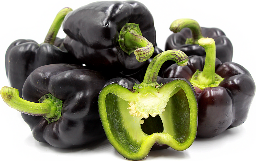 Purple Holland Bell Peppers