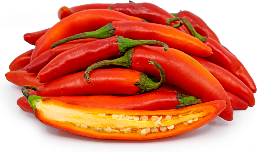 Red Serrano Chile Peppers