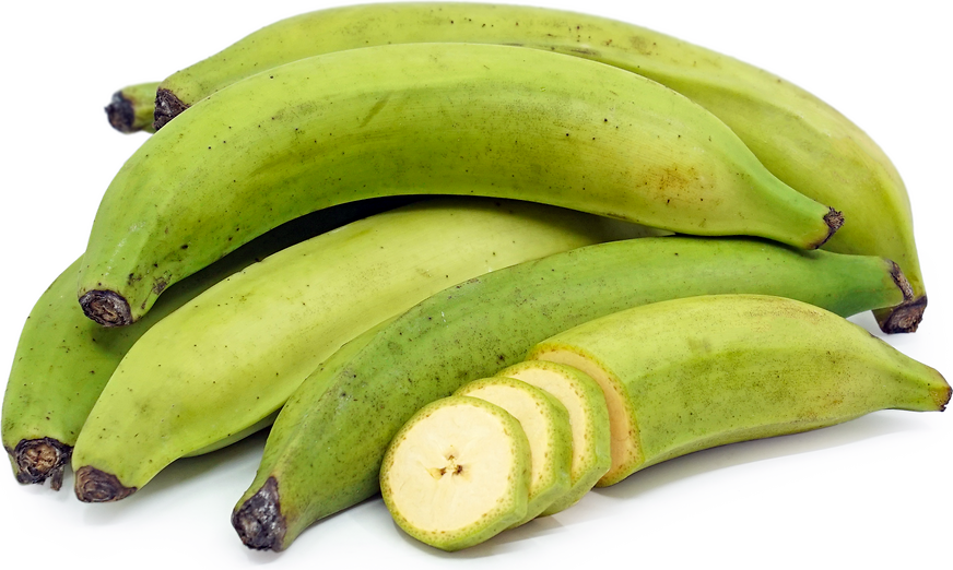 Green Plantain Bananas