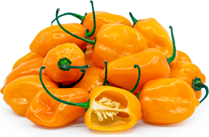 Orange Habanero Chile Peppers picture