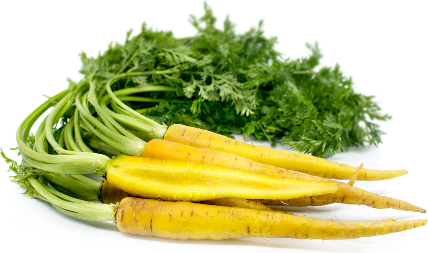 Baby Yellow Bunched Carrots
