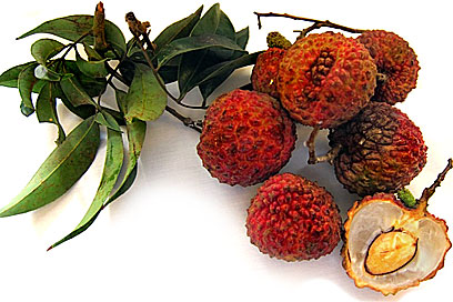 Chinese Lychees picture