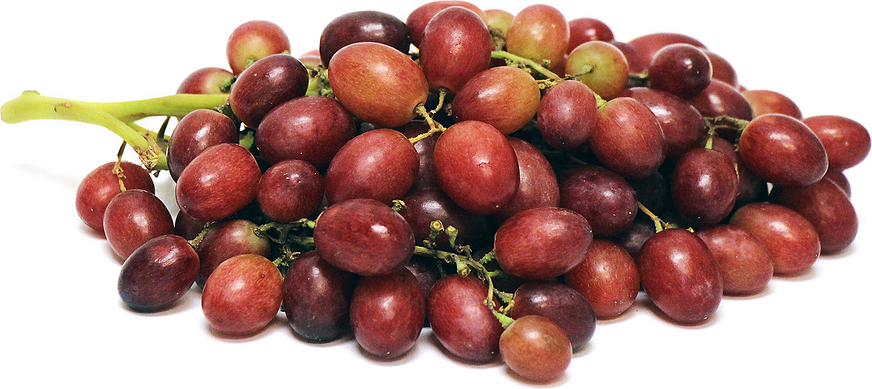 Autumn King Grapes