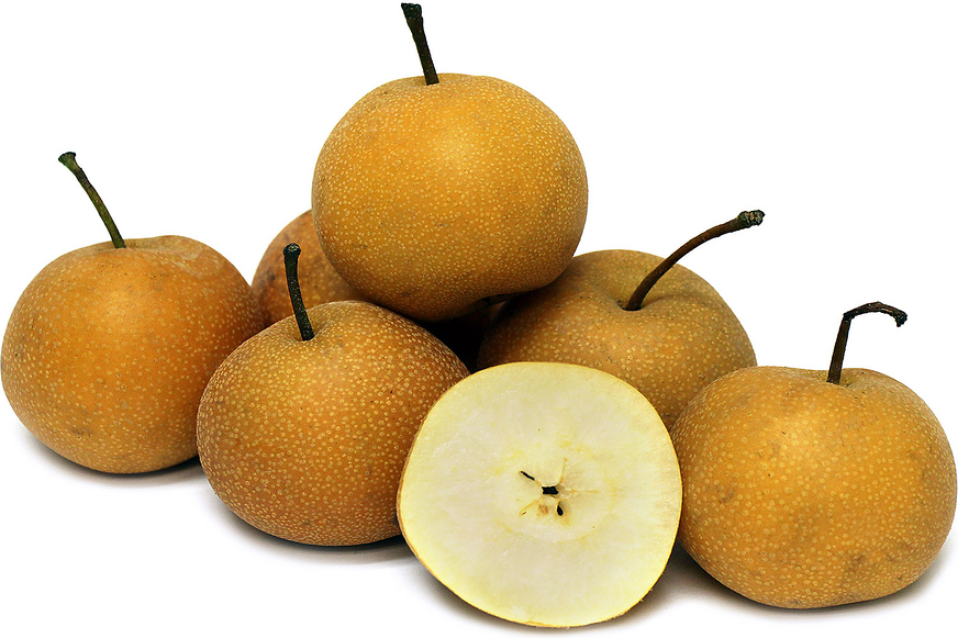 Hosui Asian Pears picture