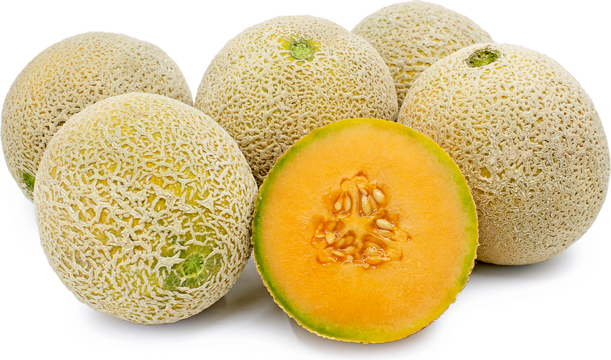 Ambrosia Melon picture