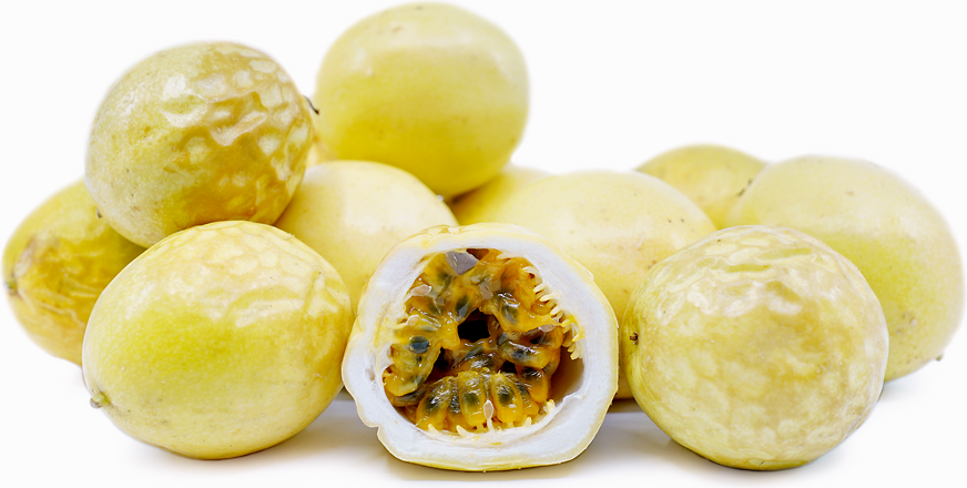 Yellow Passionfruit picture