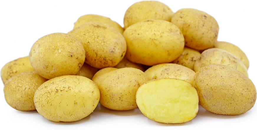 German Butterball Potatoes picture