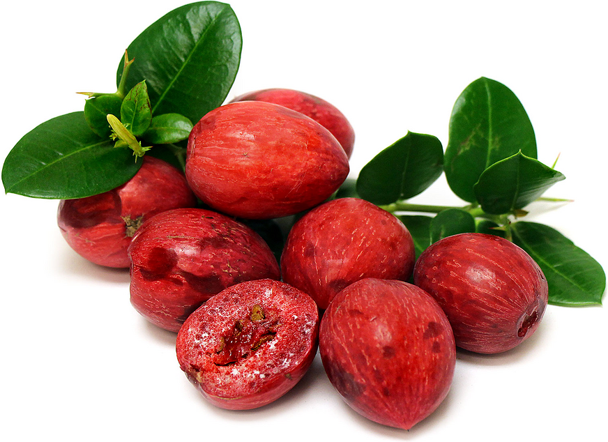 Natal Plums picture