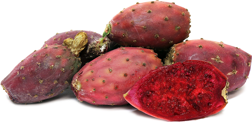 Foraged Red Prickly Pear Cactus Fruit