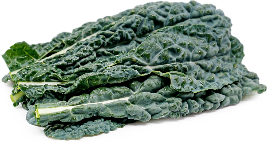 Black Italian Cabbage